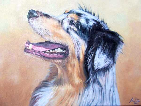 Dog Painting - Australian Shepherd Dog by Nicole Zeug