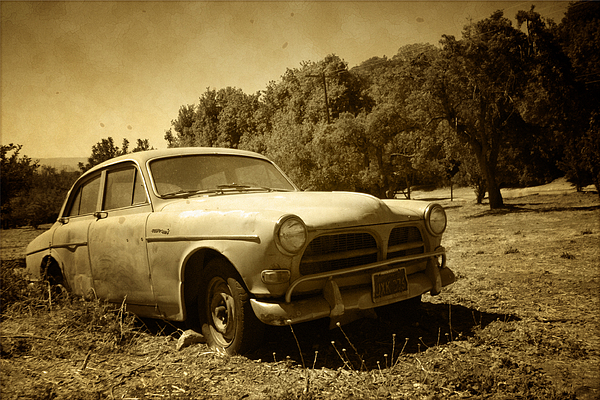 Classic Car Photograph - Auto Orchard by William Evans
