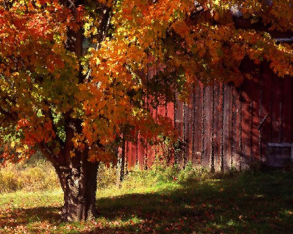 Landscape Photograph - Autumn Barn by Barry Shaffer