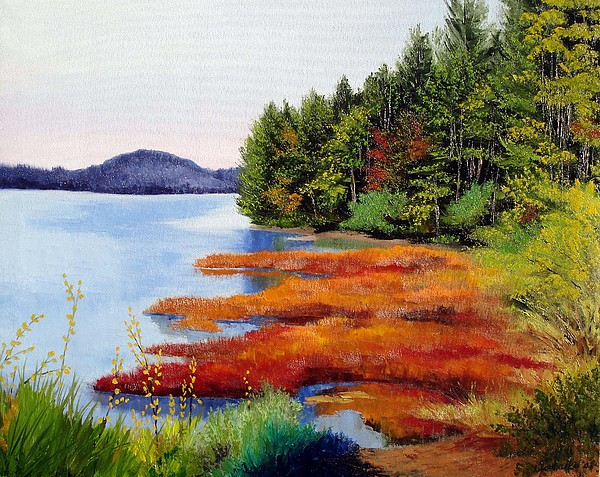 Maine Nature Oil Paintings Original Art Painting - Autumn Bay Marsh by Laura Tasheiko