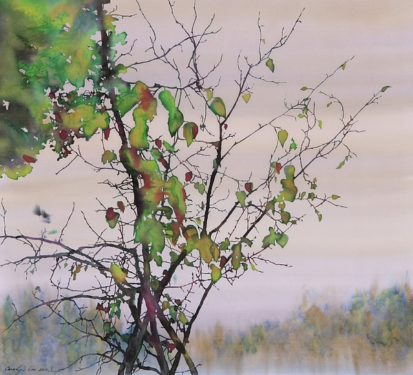 Birch Trees Tapestry - Textile - Autumn Birch By Sand Creek by Carolyn Doe