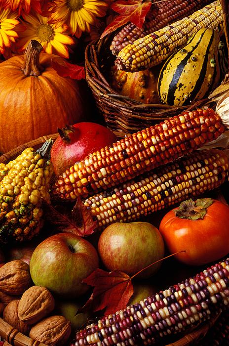 Autumn Photograph - Autumn Harvest  by Garry Gay