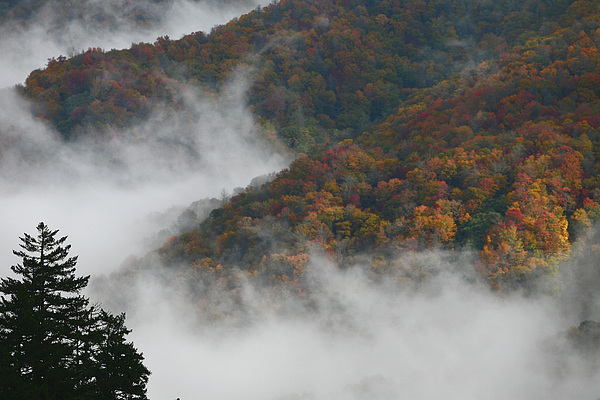 Scenery Photograph - Autumn In The Mountains by James Jones