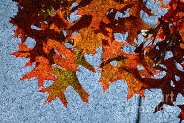 Autumn Digital Art - Autumn Leaves 20 by Jean Bernard Roussilhe