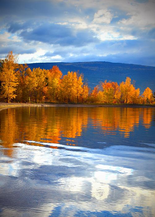 Reflections Photograph - Autumn Reflections At Sunoka by Tara Turner