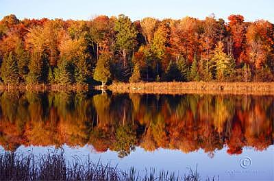 Fall Colors Photograph - Autumn Reflections by Walter Graff