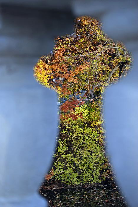 Nature Photograph - Autumn Through A Bridge by Lisa Gabrius