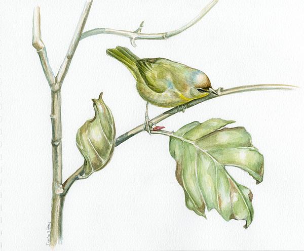 Bird Painting - Autumn Traveller by Darlene Watters