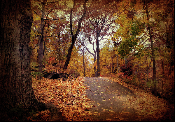 Autumn Photograph - Autumns Final Act by Jessica Jenney