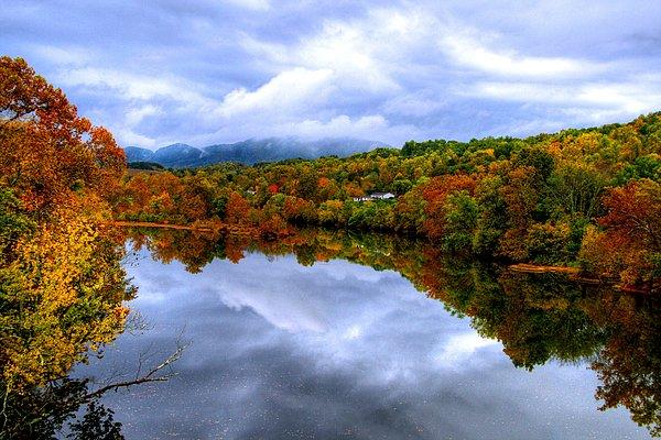 D L Ennis Photograph - Autumns Smile by D L Ennis