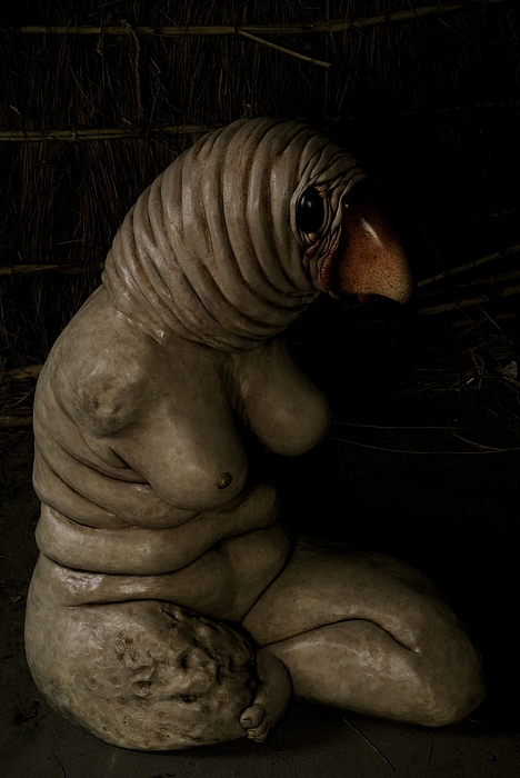 Sculpture Sculpture - Avekoala by Francesca Dalla benetta