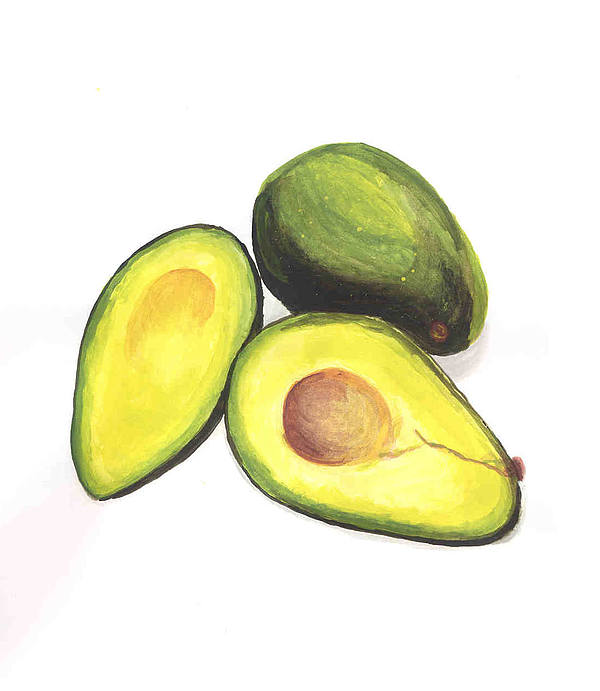 Avocados Painting by David Seter