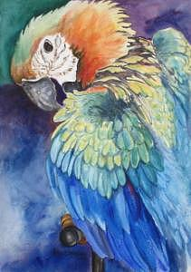 Birds Painting - Aye Aye Captain by Bev Chudey