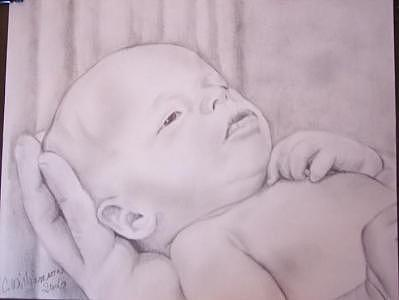 Baby In Hand Drawing by Carrie Williamson