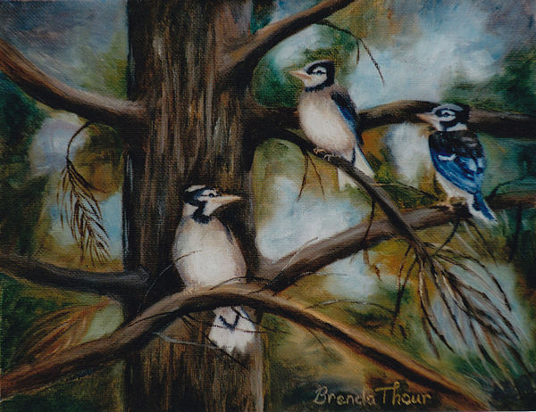 Blue Jay Painting - Baby Jays by Brenda Thour