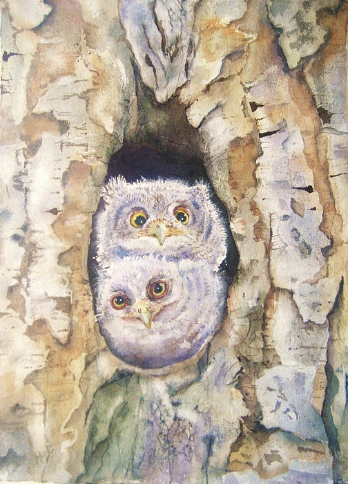 Screech Owls Painting - Baby Screech Owls by Patricia Pushaw