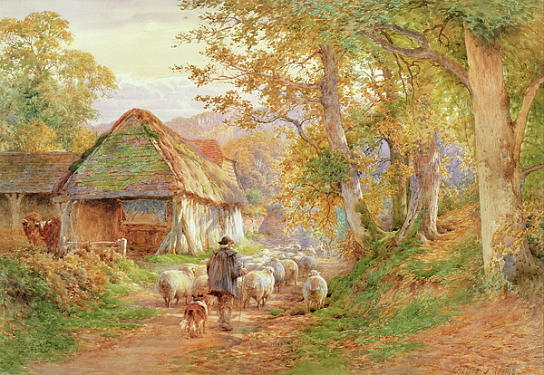 Sheep Painting - Back To The Fold by Charles James Adams