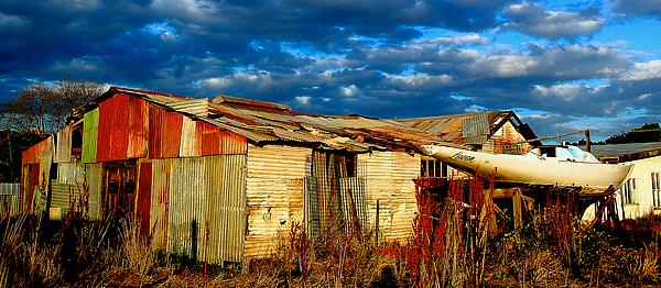 Yard Photograph - Backyard Australia by Tim Nichols