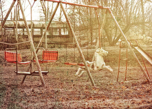 Horse Photograph - Backyard Play by JAMART Photography