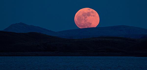 Moon Photograph - Bad Moon Rising by Sandy Sisti