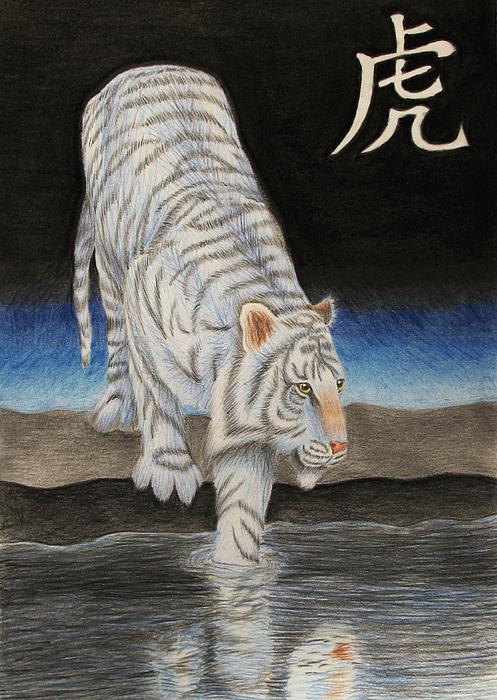 Bi Drawing - Bai Hu by Lauren Cawthron