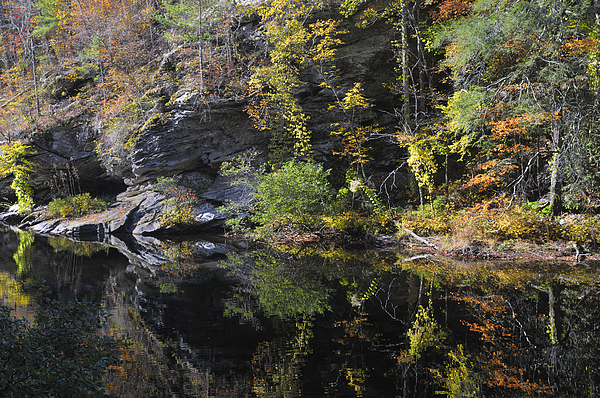 Reflection Photograph - Bald River Autumn Reflection by Darrell Young