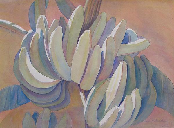 Tropical Plant Painting - Banana Series 26 by Carol McDonald