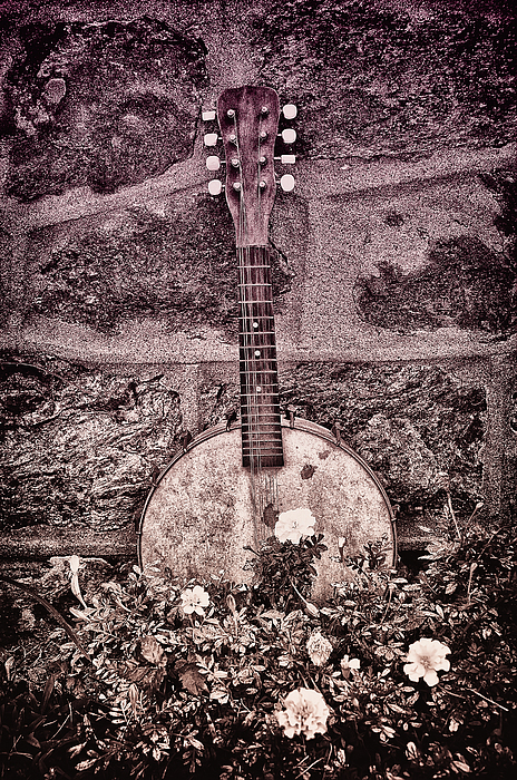 Banjo Photograph - Banjo Mandolin On Garden Wall by Bill Cannon
