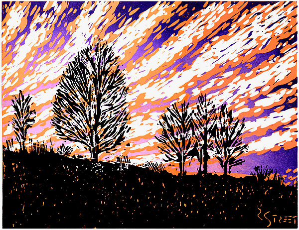 Sunset Mixed Media - Bare Trees by Randall Street