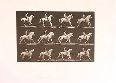 Horses Photograph - Bareback Rider  Clinton Canter by Eadweard Muybridge