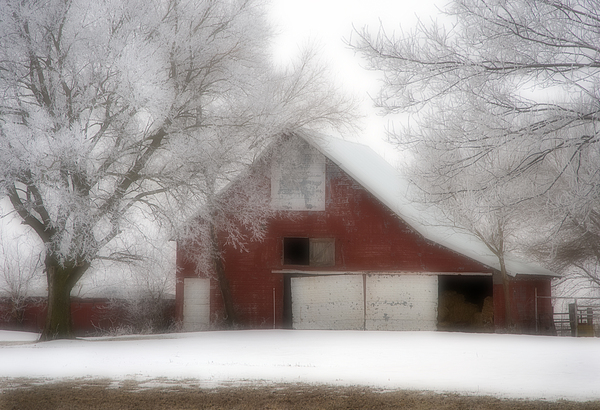 Kansas Photograph - Barn Fog And Hoarfrost by Fred Lassmann