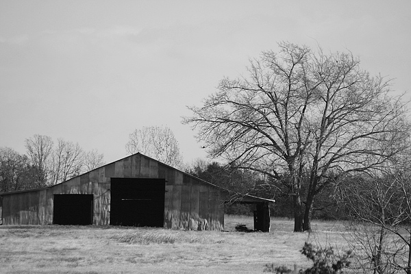 Landscape Photograph - Barn by Lisa Johnston