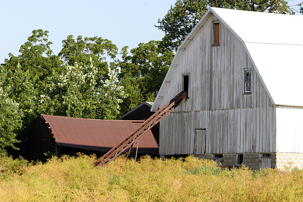 Agriculture Photograph - Barn Lot by Alan Look