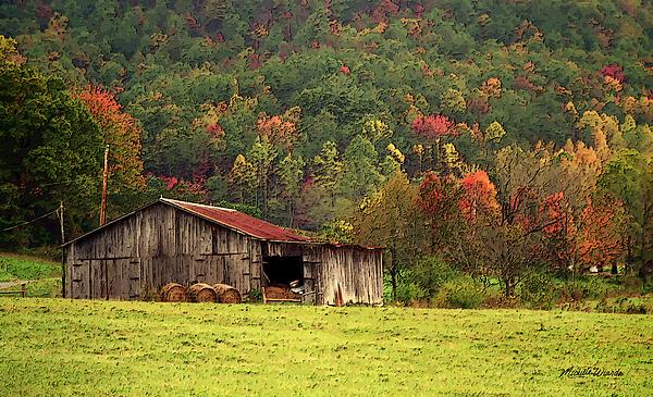 Barn Photograph - Barn North Carolina 1994 by Michelle Wiarda