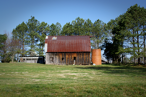 Barn Photograph - Barn With Tree In Silo by Douglas Barnett