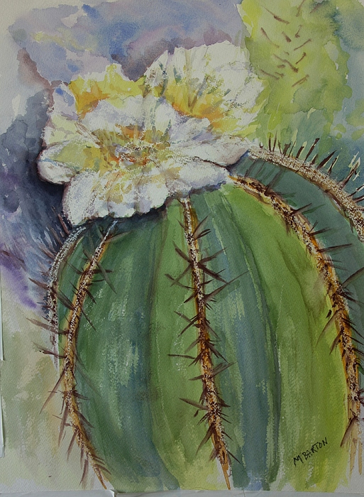 Cactus Painting - Barrel Cactus In Bloom by Marilyn Barton