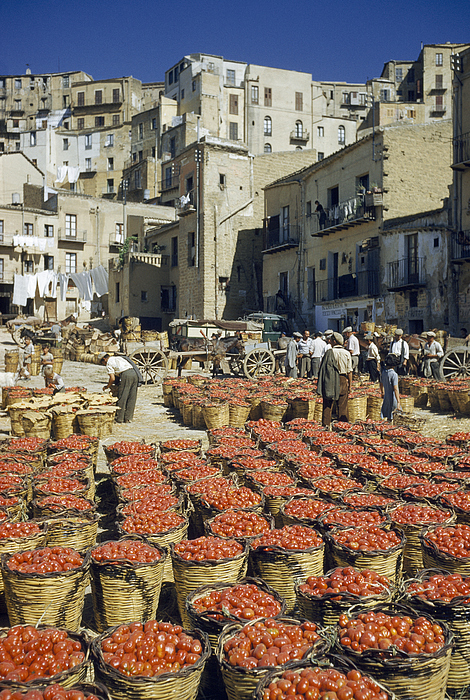 Outdoors Photograph - Baskets Filled With Tomatoes Stand by Luis Marden
