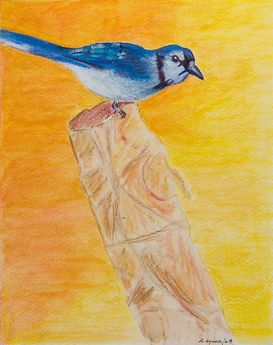 Blue Jays Painting - Basking In The Sunset - My Stump by Alison Lynch
