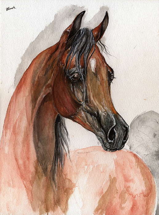 Horse Painting - Bay Arabian Horse Watercolor Portrait by Angel  Tarantella
