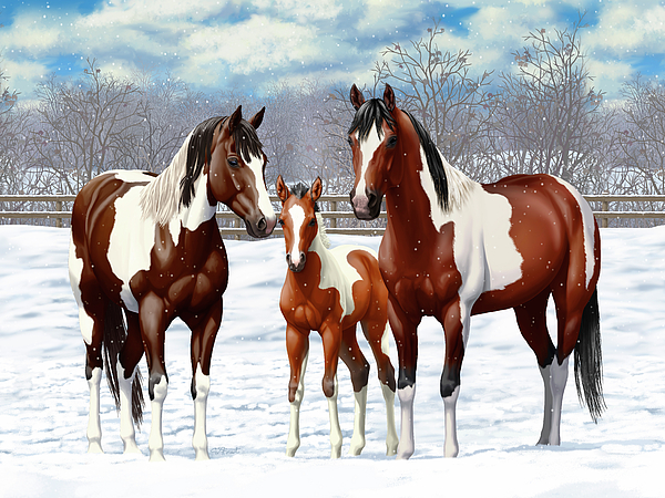 Paint Horse Painting - Bay Paint Horses In Winter by Crista Forest