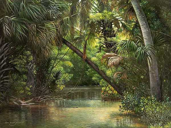 Florida Print - Bayonet Point by Keith Martin Johns