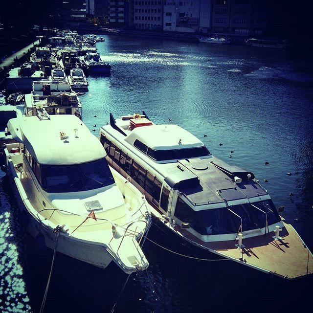Bayside Photograph - #bayside  #ベイエリア by Bow Sanpo