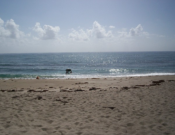 Surf Photograph - Beach Bobbiong by Karen Thompson