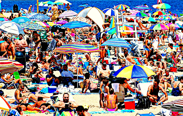 Beach Photograph - Beach Chaos by Diana Angstadt