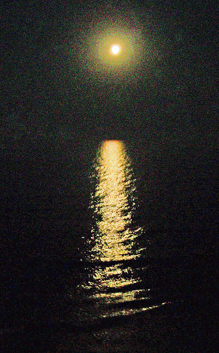 Moon Photograph - Beach Moonglow by Patricia Taylor