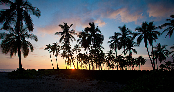 Beach Photograph - Beach Sunset by Mike Reid