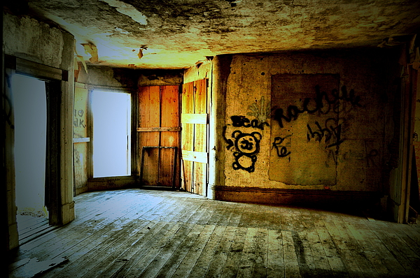 Abandoned House Photograph - Bear With Me by Emily Stauring