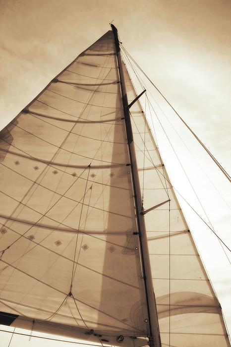 Photo Photograph - Beaufort Sails 1 by Alan Hausenflock