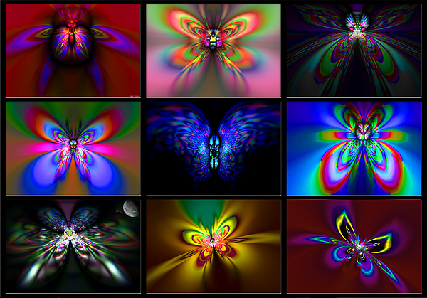 Beautiful Butterfly Collection Painting by Heinz G Mielke