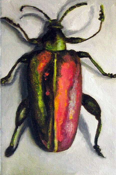 Bug Painting - Beetle by Leah Saulnier The Painting Maniac